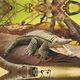 Plyšová hračka: Krokodýl plyšový, Folkmanis