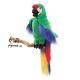 Plyšová hračka: Papoušek ara zelený plyšový, Folkmanis