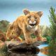 Plyšová hračka: Puma americká plyšová, Folkmanis