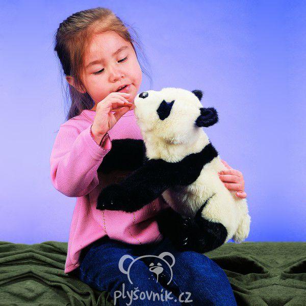 Panda plyšová 36cm Folkmanis