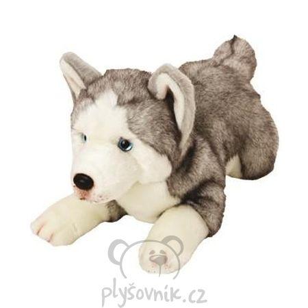 Husky Yomiko plyšový 35cm Suki Gifts | skladem