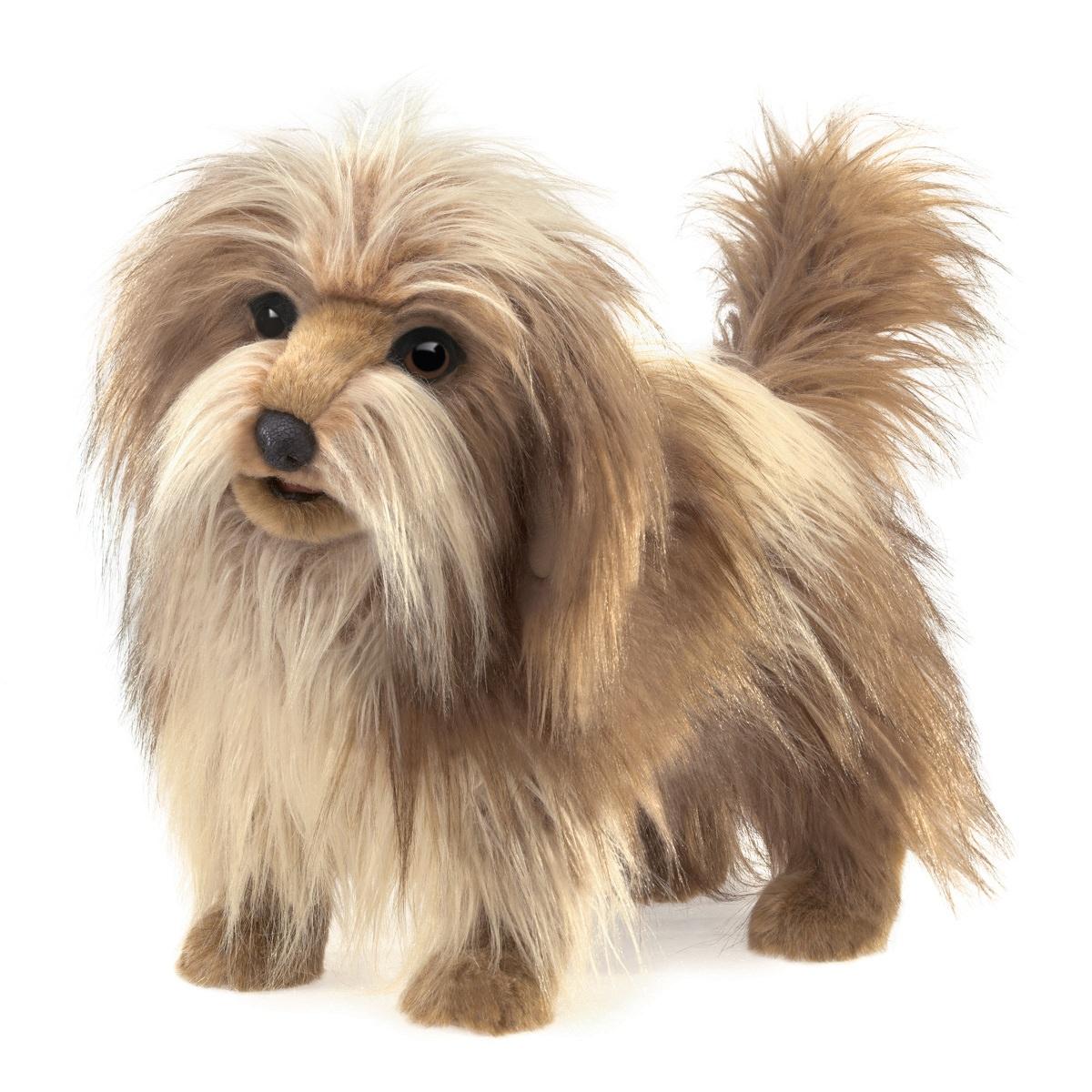 Chlupatý pes plyšový 50 × 35 × 22cm Folkmanis | skladem