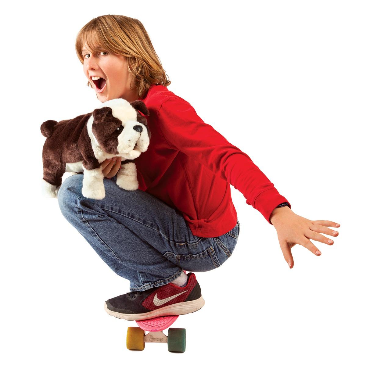 Anglický buldok štěně plyšový 37 × 22 × 12cm Folkmanis | skladem