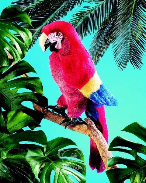 Papoušek Ara plyšový 40 + 36cm Folkmanis | skladem